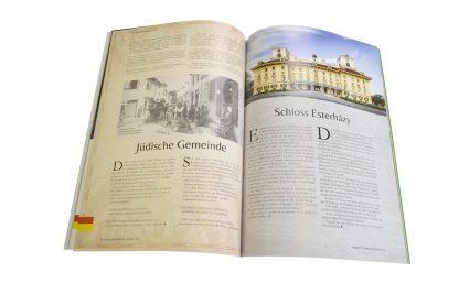 """CulturaLatina 16 / """"100 Jahre Burgenland"""""""